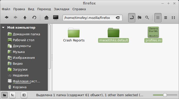 Папка с профилем (пароли и закладки) FireFox в LinuxMint